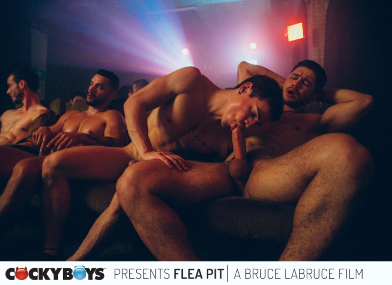 Fleapit-0031_first