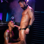Raging Stallion: Pheonix and Cristian